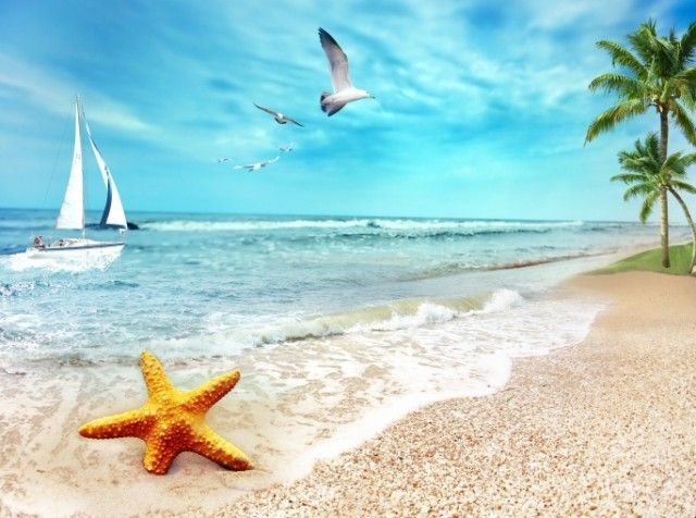 Những từ và cụm từ tiếng Anh cần biết khi đi biển