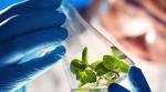 Thuật ngữ tiếng Anh chuyên ngành công nghệ sinh học (Phần 2)