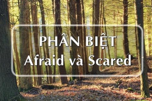 Cách phân biệt Afraid và Scared