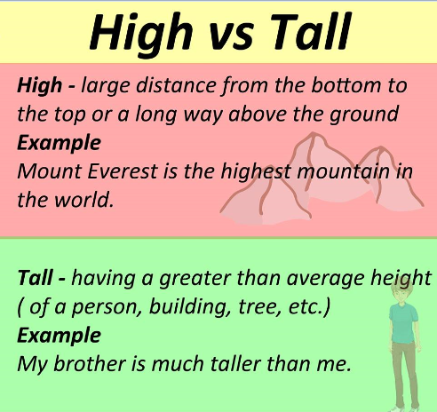 Cách phân biệt hai từ high và tall trong tiếng Anh