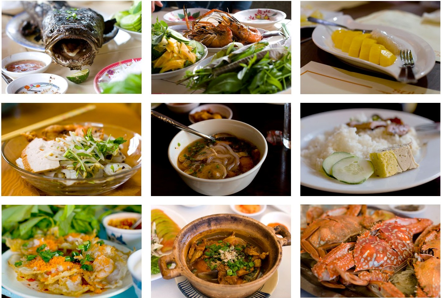 Unit 5: Vietnamese food and drink