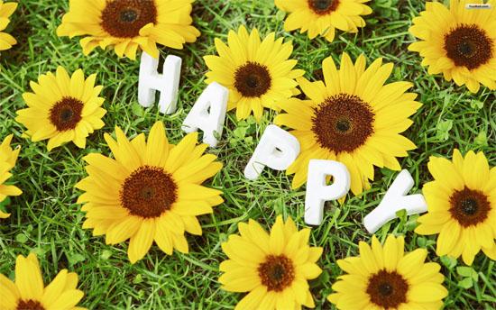 Những câu nói tiếng Anh hay về hạnh phúc