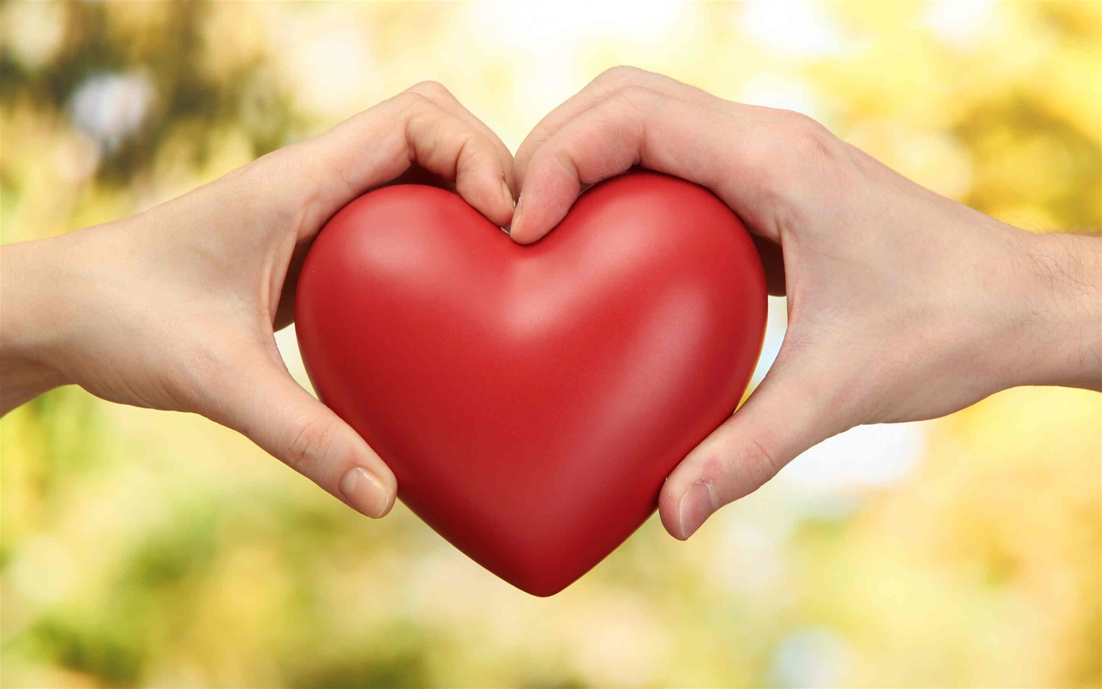 Bài luận tiếng Anh về chủ đề tình yêu
