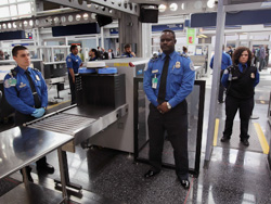Lesson 6: At the airport security